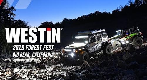 2019 Big Bear Forest Fest