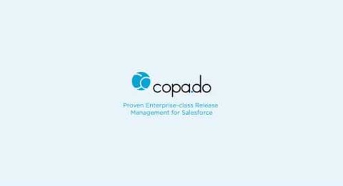 Copado Solutions  User Stories Integration with Selenium Testing