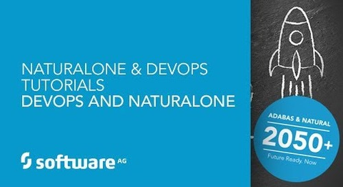 NaturalONE & DevOps Tutorials - DevOps and NaturalONE
