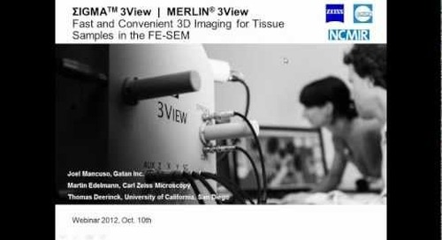 ZEISS Webinar: Fast and Convenient 3D Imaging for Tissue Samples in the FE-SEM
