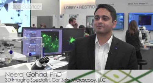 ZEISS @ Neuroscience 2016: Fast Mode for ZEISS LSM 880 with Airyscan