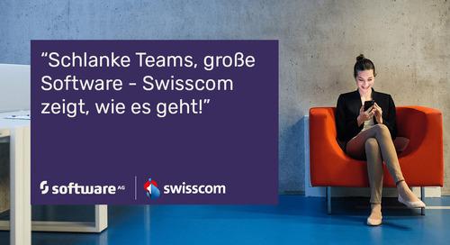 Auch mit schlanken Teams, große Software entwickeln