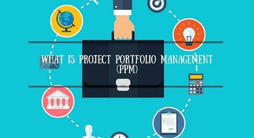 What is Project Portfolio Management (PPM)