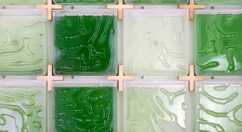 This New Algae Farm Makes Growing Green Superfood at Home a Snap