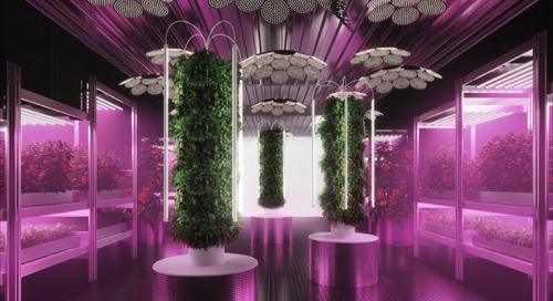 Tom Dixon and IKEA Are Designing the Future of Urban Farming