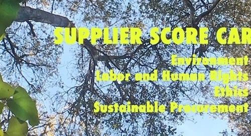 Measuring Supplier Sustainability