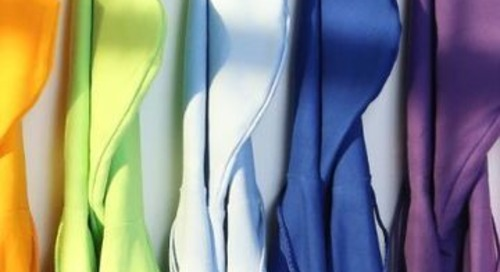 HanesBrands' EcoSmart line helps cut climate impact