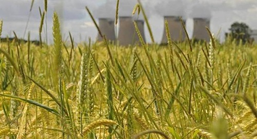 Britain's Drax becomes world's first biomass plant to capture carbon