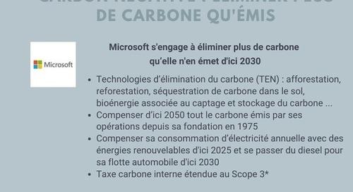 [Infographie] Carbon free, carbon negative, net zero emission, neutralité carbone... La jungle des engagements climat
