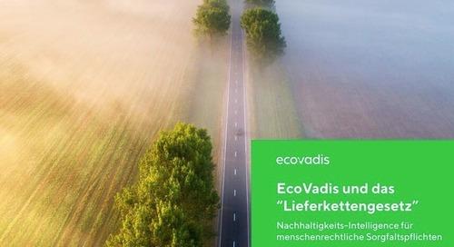 EcoVadis und das Lieferkettengesetz