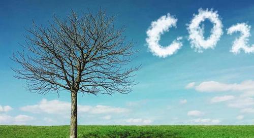 """Salesforce se convierte en empresa """"cero emisiones"""""""