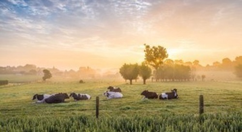 Danone and Nestlé among 87 companies committing to a '1.5°C future'