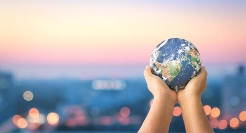 101 Companies Committed To Reducing Their Carbon Footprint