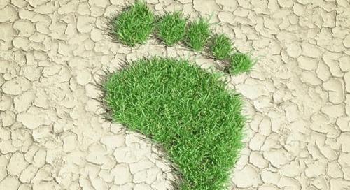 La contribution des achats à la réduction de l'empreinte carbone