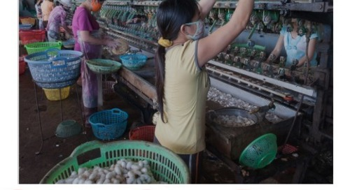 Fighting Corruption in Global Supply Chains: A Report Card