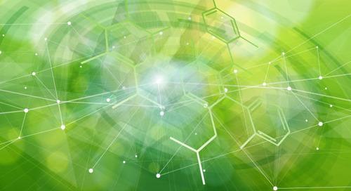 Neues Branchennetzwerk zum Thema Nachhaltigkeit startet