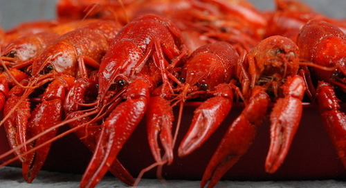 Louisiana bill would require country of origin labeling on restaurant menus