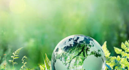 "BME Leitfaden ""Nachhaltige Beschaffung"" erschienen"