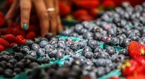Berry producers commit to 100% recycle-ready packaging by 2025
