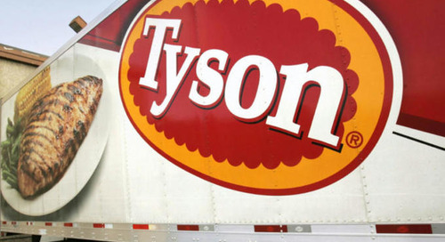 Tyson unveils Global Forest Protection Standard