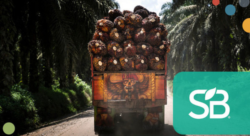 BASF, Estée Lauder, RSPO Partner to Enhance Sustainable Palm Oil Production