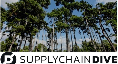 Majority of companies fall short on sustainable procurement