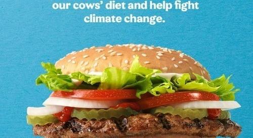 Burger King pense avoir trouvé l'ingrédient miracle pour réduire les émissions de méthane des vaches
