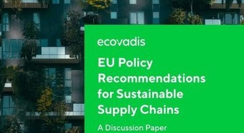 EU Policy Recommendations for Sustainable Supply Chains