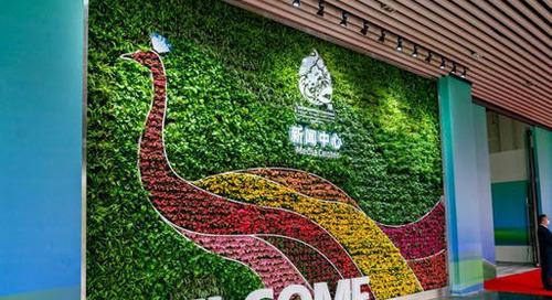Six questions sur la COP15 biodiversité, l'autre COP cruciale pour l'avenir de la planète