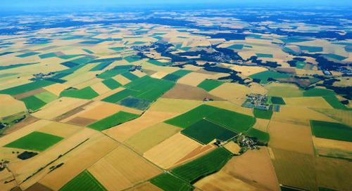 PAC : l'Europe ne parvient pas à verdir son agriculture malgré l'urgence climatique
