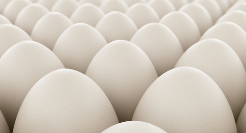 Poultry and egg sustainability roundtable announces inaugural board