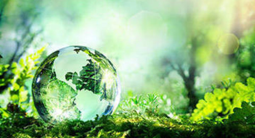 Brands struggling to scale sustainable initiatives