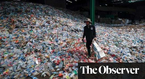 The end of plastic? New plant-based bottles will degrade in a year | Environment | The Guardian