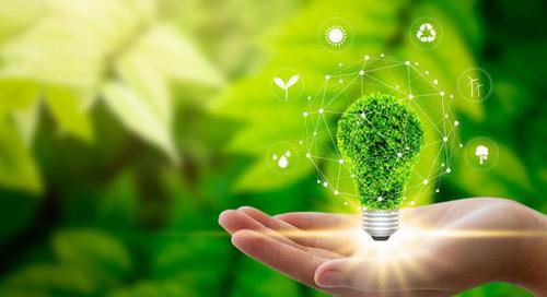 Nachhaltigkeit in Unternehmen umsetzen: Definition, Maßnahmen und Tools