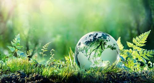 CFOs gründen Nachhaltigkeits-Taskforce