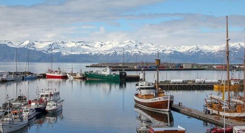 Sustainable Fisheries Partnership 'halfway' to global targets