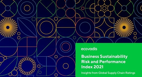 Business Sustainability Risk and Performance: Insights from Global Supply Chain Ratings