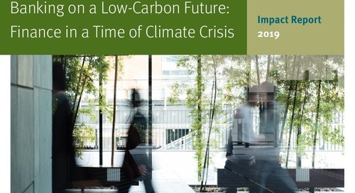 Banking on a Low-Carbon Future: Finance in a Time of Climate Crisis