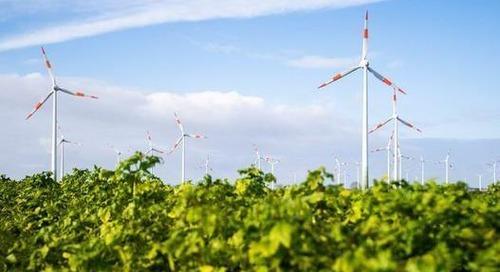 Green Bonds: Deutschland gibt Startschuss für Öko-Anleihen