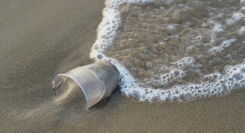 Loi anti-gaspillage : La France vise une réduction de 20 % des emballages plastiques à usage unique d'ici 2025