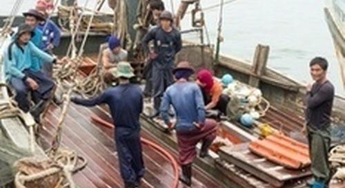 Indonesia's tuna fisheries race for sustainability
