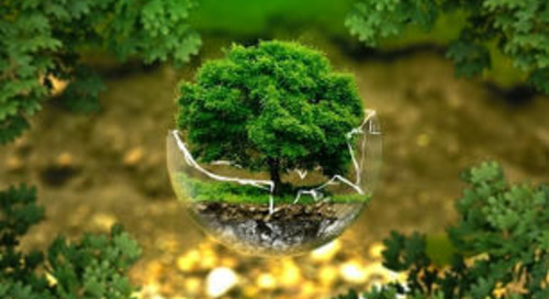 EcoVadis: BCD Travel erreicht erneut Bestnote bei Nachhaltigkeit