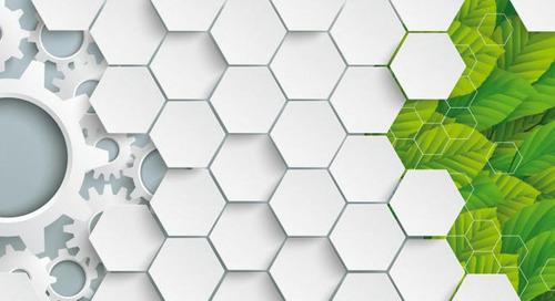 Schneider Electriczum nachhaltigsten Unternehmen der Welt gekürt
