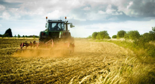 Report: Scottish farmers could 'comfortably' slash emissions by over a third