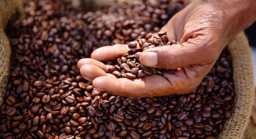 McDonald's achieves 100% sustainably sourced coffee in the US