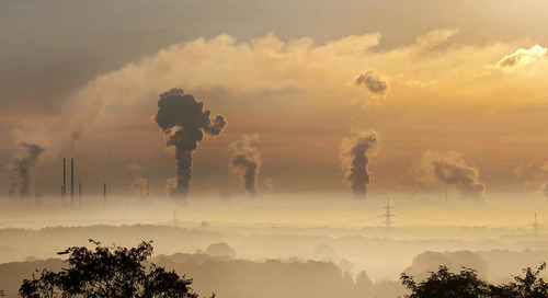 Podcast | Have Supply Chains Forgotten About Sustainability?