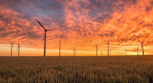 Sustainability Isn't Stopping: Just Ask These Companies