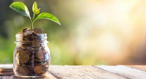 Investitionen in Green Bonds werden verstetigt