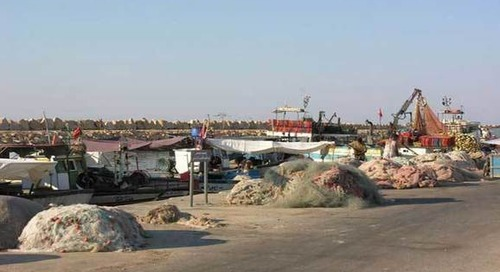 Lancement à Kelibia du projet d'appui à la gestion durable des ressources halieutiques et aquacoles