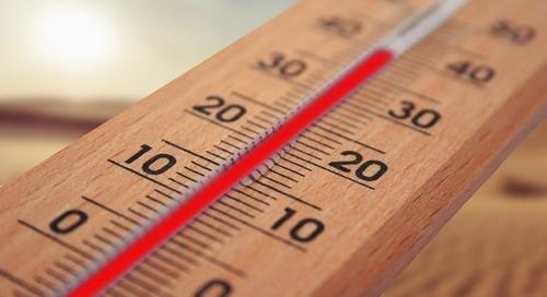 Nestlé, Danone, Burberry... 87 grandes entreprises s'engagent à respecter une trajectoire 1,5°C